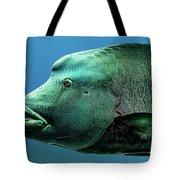 Fish Lips Tote Bag