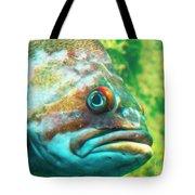 Fish Looking At You Tote Bag