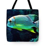 Fish No.3 Tote Bag