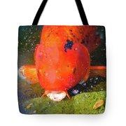 Fish Surprise Tote Bag