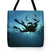 Fish Swim Around A Diver In The Cayman Tote Bag