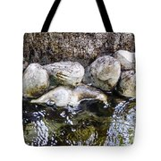 Fish Wives Fountain Detail Tote Bag