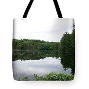 Fisherville Brook 1 Tote Bag