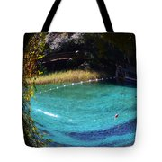 Fisheye Palm And Springs Tote Bag