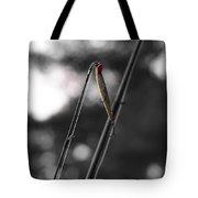 Fishing Lure Tote Bag