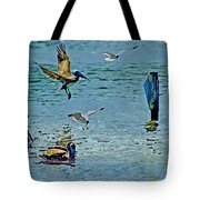 Fishing Pelican And Seagulls Tote Bag