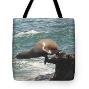 Fishing Sea Lion Tote Bag