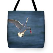 Fishing Tern Tote Bag