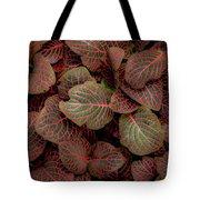 Fittonia Tote Bag