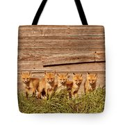 Five Fox Kits By Old Saskatchewan Granary Tote Bag