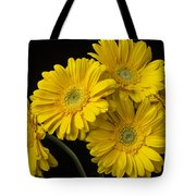 Five Gerbera Daisies Tote Bag