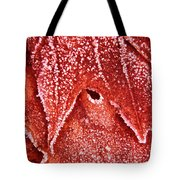 Five O'clock Frost Tote Bag