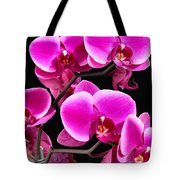Five Orchids  Tote Bag
