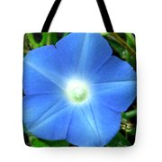 Five Point Star Morning Glory  Tote Bag