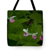 Five Slippers Tote Bag