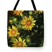 Five Yellow Flowers  Tote Bag