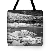 Fjallsarlon Glacier Lagoon Iceland 2348 Tote Bag