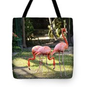 Flamago Twins  Tote Bag