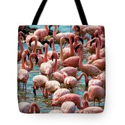 Flamboyance Of Flamingos Tote Bag