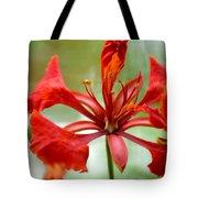 Flamboyant Beauty Tote Bag