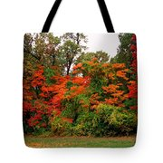 Flamboyant Forest Tote Bag