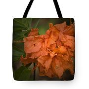 Flame Azalea Tote Bag