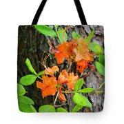Flame Azaleas Tote Bag