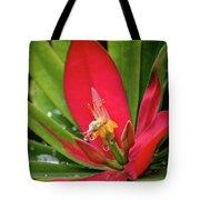 Flame Of Jamaica Tote Bag