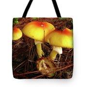 Flame Pluteus Mushroom  Tote Bag