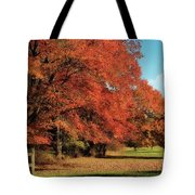 Flame Trees Tote Bag