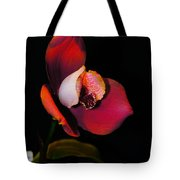 Flaming Orchid Tote Bag