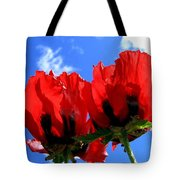 Flaming Skies Tote Bag