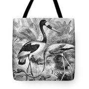 Flamingo & Jabiru Tote Bag