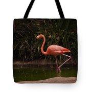 Flamingo 1 San Diego Zoo Tote Bag