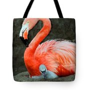 Flamingo And Baby Tote Bag