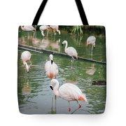 Flamingo Bath  Tote Bag