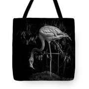 Flamingo Classic Bw Tote Bag