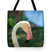 Flamingo Closeup Tote Bag