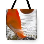 Flamingo Feeding Tote Bag