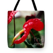 Flamingo Flower Tote Bag