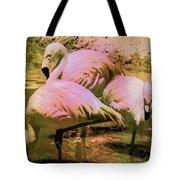 Flamingo - Id 16217-202804-4625 Tote Bag