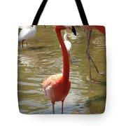Flamingo II Tote Bag