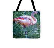 Flamingo In Still Waters Tote Bag