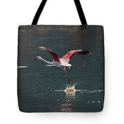 Flamingo Kick Off  Tote Bag