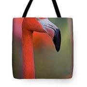 Flamingo Portrait - Sacramento Zoo Tote Bag