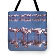 Flamingo Reflection - Lake Nakuru Tote Bag