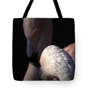 Flamingo Study - 1 Tote Bag