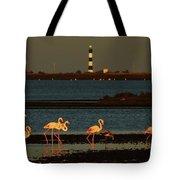 Flamingo Sunrise Tote Bag