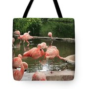 Flamingoes Looking Oh So Pretty  Tote Bag