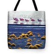 Flamingos At Torres Del Paine Tote Bag